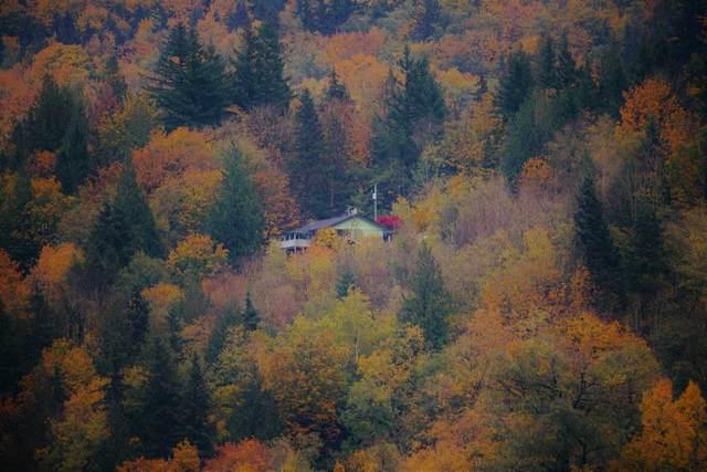 36414 Sumas Mountain Road, Abbotsford, BC V3G 0B5 (#R2508390) :: Macdonald Realty