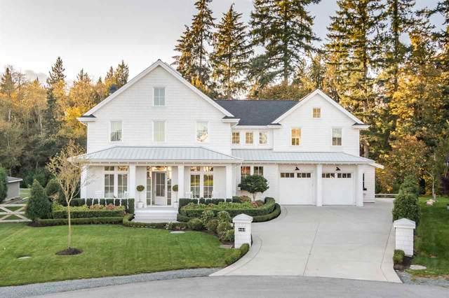 4463 246B Street, Langley, BC V2Z 1L6 (#R2509334) :: 604 Home Group