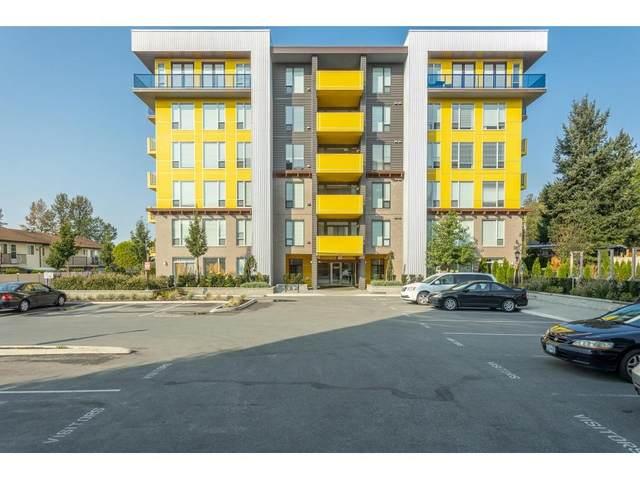 2555 Ware Street #503, Abbotsford, BC V2S 0J4 (#R2509514) :: Initia Real Estate