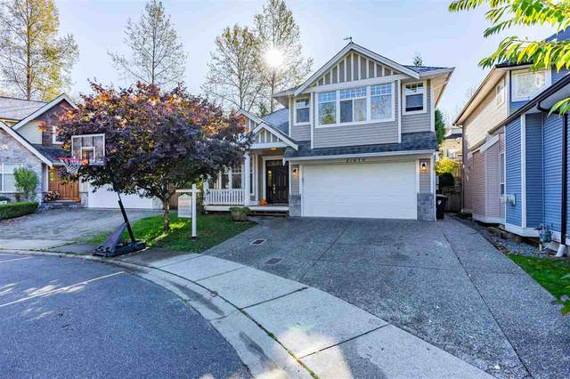 21674 93 Avenue, Langley, BC V1M 4E1 (#R2511874) :: Initia Real Estate