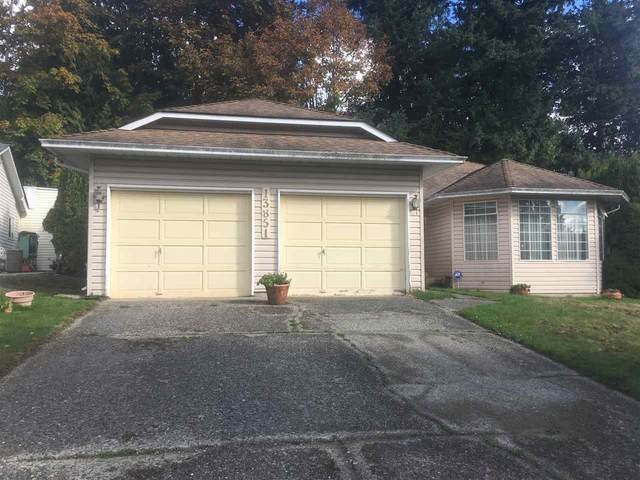 13851 66 Avenue, Surrey, BC V3W 9L6 (#R2512011) :: Initia Real Estate