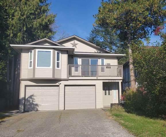19489 115A Avenue, Pitt Meadows, BC V3Y 1R5 (#R2513043) :: Ben D'Ovidio Personal Real Estate Corporation | Sutton Centre Realty