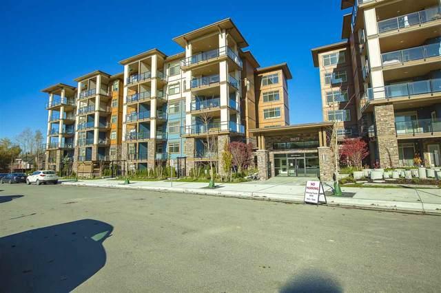 20673 78 Avenue #207, Langley, BC V2Y 3K1 (#R2513385) :: 604 Home Group