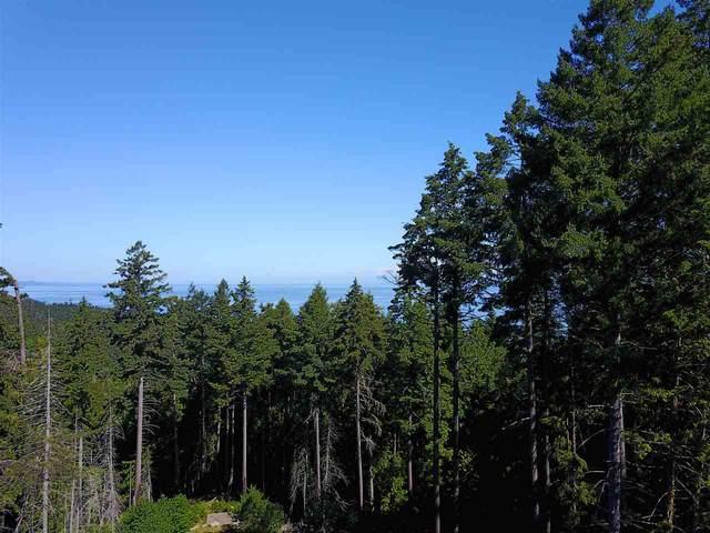 1221 Georgia View Road, Galiano Island, BC V0V 0V0 (#R2517321) :: Macdonald Realty
