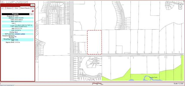 24069 110 Avenue, Maple Ridge, BC V2W 1H7 (#R2527950) :: Premiere Property Marketing Team