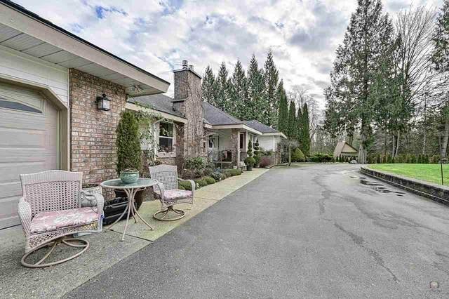 9950 284 Street, Maple Ridge, BC V2W 1L2 (#R2528230) :: Macdonald Realty