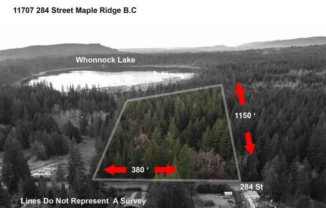 11707 284 Street, Maple Ridge, BC V2W 1L9 (#R2529280) :: Macdonald Realty