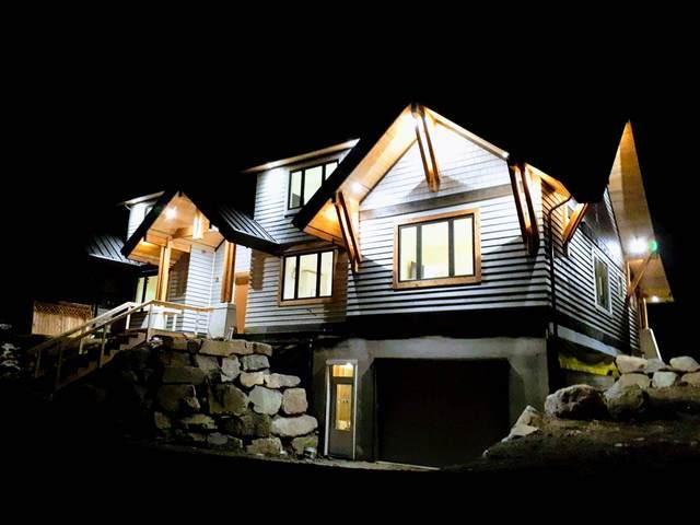 41611 Grant Road, Squamish, BC V0N 1H0 (#R2531494) :: RE/MAX City Realty