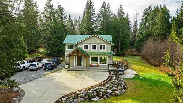 27002 Ferguson Avenue, Maple Ridge, BC V2W 1R9 (#R2537467) :: Macdonald Realty