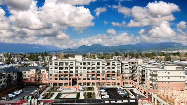 22638 119 Avenue #606, Maple Ridge, BC V2X 2X9 (#R2542403) :: RE/MAX City Realty