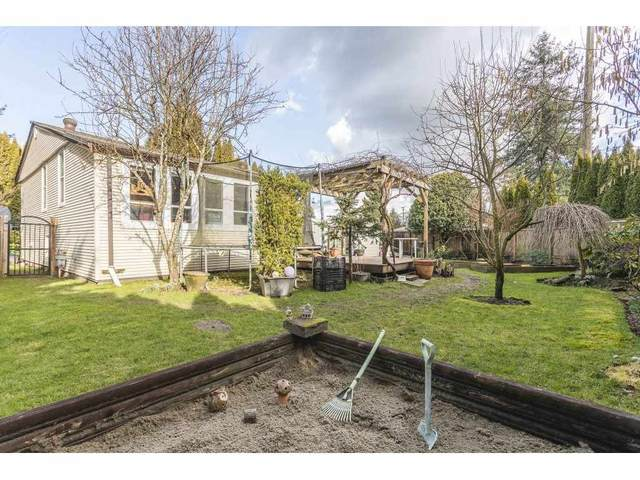 1732 Pekrul Place, Port Coquitlam, BC V3C 6A7 (#R2542595) :: RE/MAX City Realty