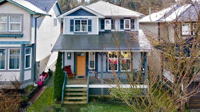 24362 101 Avenue, Maple Ridge, BC V2W 1W8 (#R2543403) :: Macdonald Realty