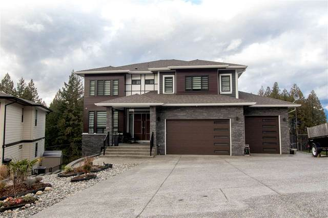 11043 Carmichael Street, Maple Ridge, BC V2W 0H3 (#R2546829) :: Macdonald Realty