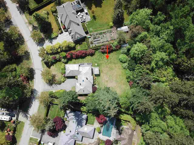 2637 Northcrest Drive, Surrey, BC V4P 2G6 (#R2577640) :: Homes Fraser Valley