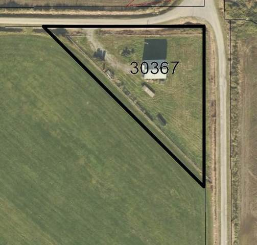 30367 Cooper Avenue, Mission, BC V4S 1J5 (#R2596024) :: Ben D'Ovidio Personal Real Estate Corporation | Sutton Centre Realty