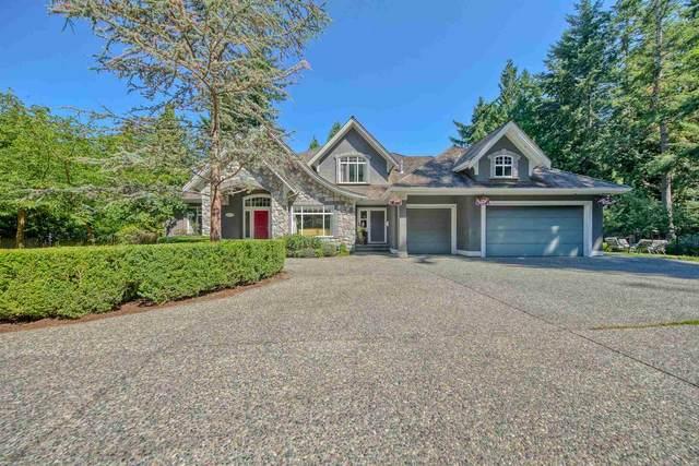 14125 28 Avenue, Surrey, BC V4P 0A3 (#R2601177) :: Initia Real Estate