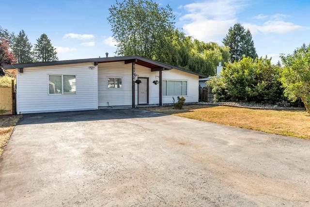 11754 Steeves Street, Maple Ridge, BC V2X 4X8 (#R2601394) :: Initia Real Estate