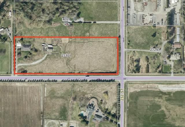 23101 40 Avenue, Langley, BC V2Z 2H2 (#R2603886) :: Ben D'Ovidio Personal Real Estate Corporation   Sutton Centre Realty