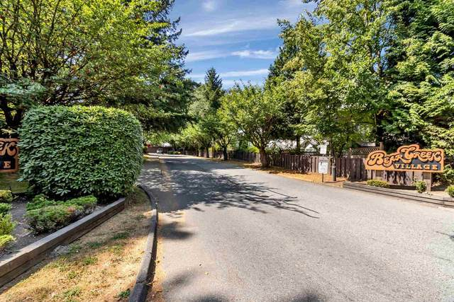 8555 King George Boulevard #49, Surrey, BC V3W 5C3 (#R2605044) :: Ben D'Ovidio Personal Real Estate Corporation | Sutton Centre Realty