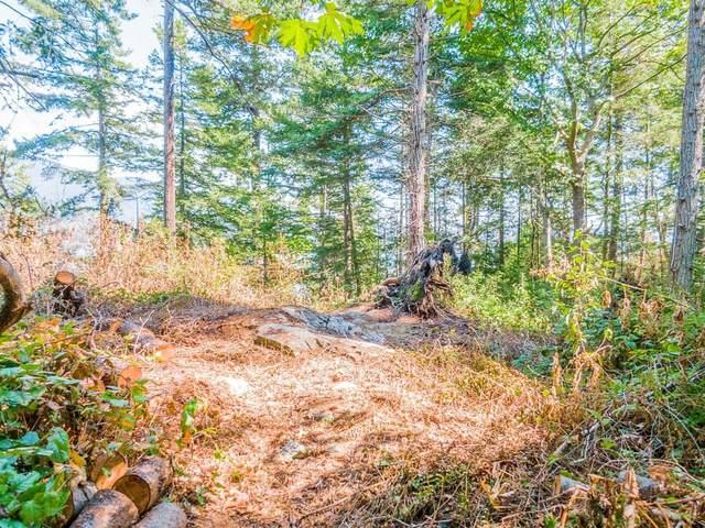 16 Passage Island, West Vancouver, BC V7W 1V7 (#R2612955) :: Initia Real Estate