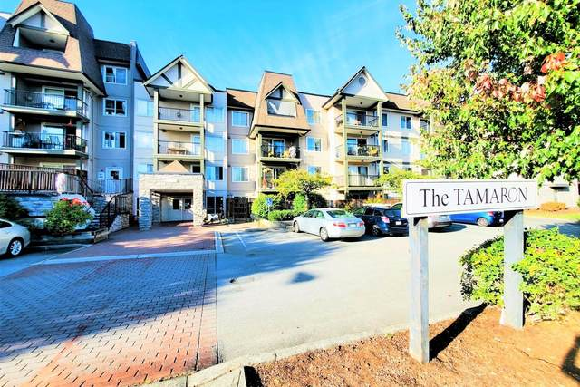 12083 92A Avenue #219, Surrey, BC V3V 8C8 (#R2618775) :: Premiere Property Marketing Team