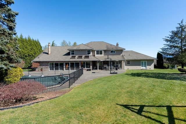 10156 174 Street, Surrey, BC V4N 4K3 (#R2625503) :: 604 Realty Group