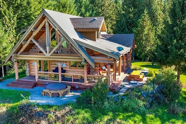 48472 Elk View Road, Ryder Lake, BC V4Z 1H1 (#R2625835) :: 604 Home Group