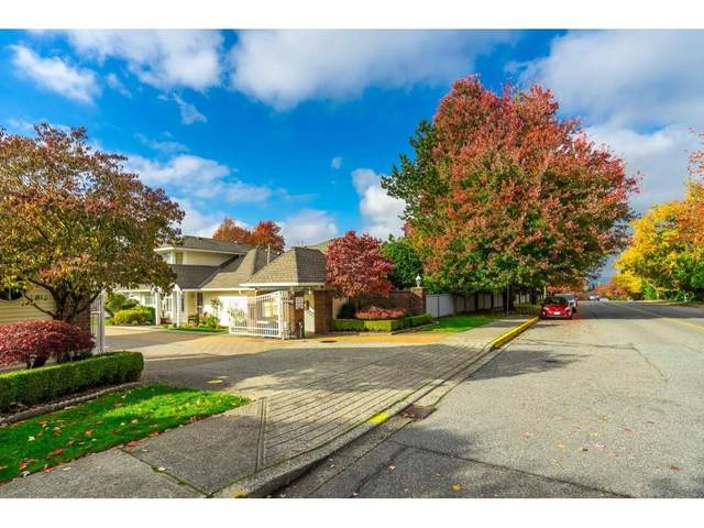 8737 212 Street #67, Langley, BC V1M 2C8 (#R2627413) :: 604 Home Group