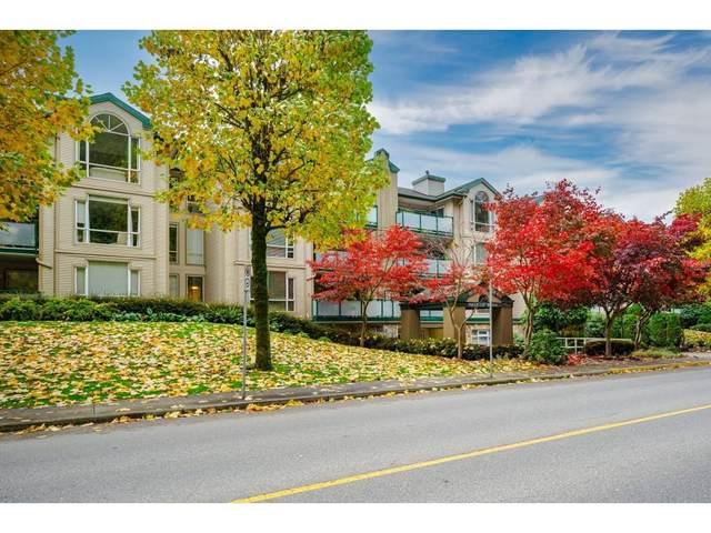 19142 122ND Avenue #211, Pitt Meadows, BC V3Y 2P9 (#R2628244) :: 604 Home Group