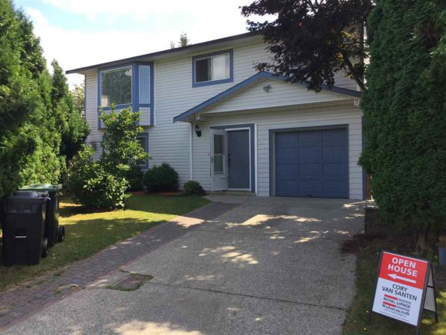 3357 270A Street, Langley, BC V4W 3H2 (#R2195527) :: Titan Real Estate - Re/Max Little Oak Realty