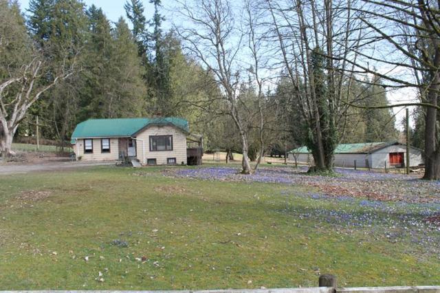 9576 280 Street, Maple Ridge, BC V2W 1V9 (#R2249871) :: West One Real Estate Team