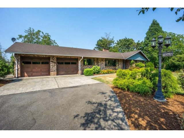 25065 28 Avenue, Langley, BC V4W 2R2 (#R2293861) :: West One Real Estate Team