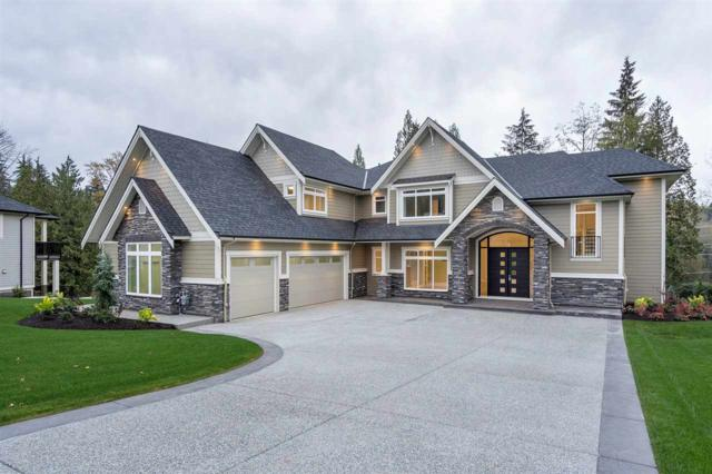12042 265A Street, Maple Ridge, BC V2W 1P1 (#R2307772) :: West One Real Estate Team