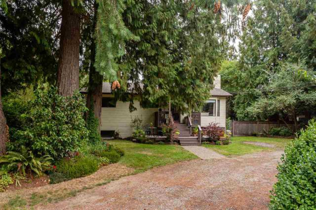 3764 207 Street, Langley, BC V3A 4X4 (#R2307949) :: Vancouver House Finders