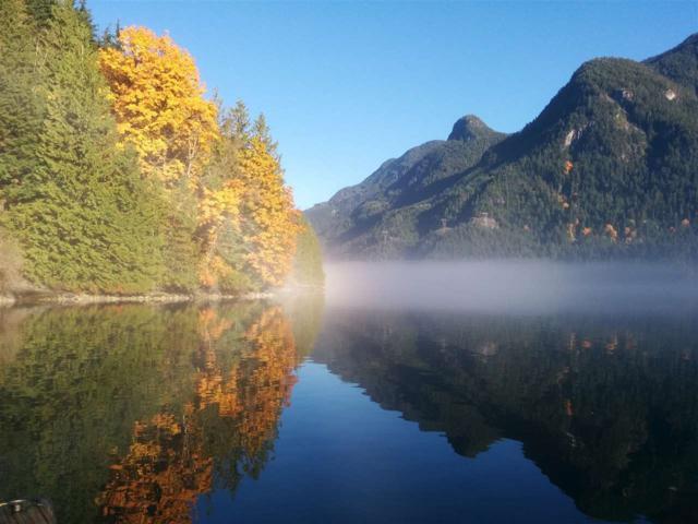 DL 1027 Indian Arm, North Vancouver, BC V0V 0V0 (#R2313173) :: TeamW Realty