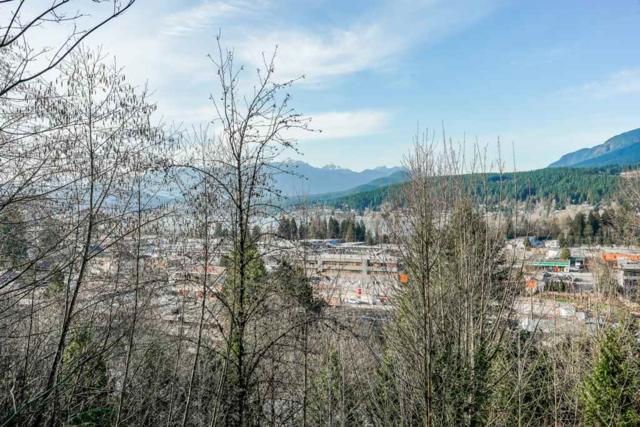 3033 Terravista Place #208, Port Moody, BC V3H 5A3 (#R2350270) :: TeamW Realty