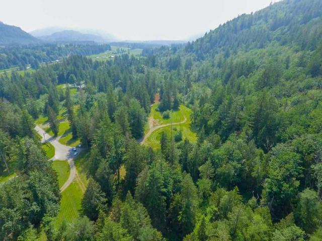 1401 Maple Rock Drive, Cultus Lake, BC V2R 4X5 (#R2365197) :: Royal LePage West Real Estate Services
