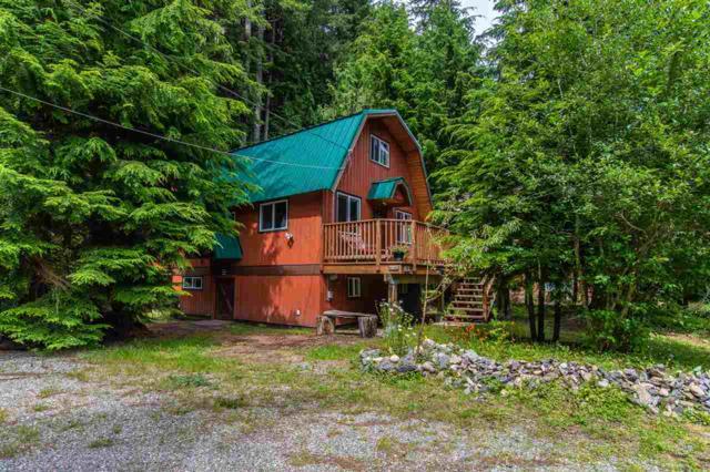 15091 Stem Street, Hope, BC V0X 1L2 (#R2381375) :: Vancouver Real Estate