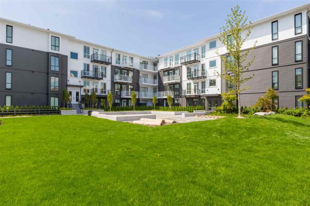 10168 149 Street #202, Surrey, BC V3R 0E9 (#R2389741) :: Royal LePage West Real Estate Services