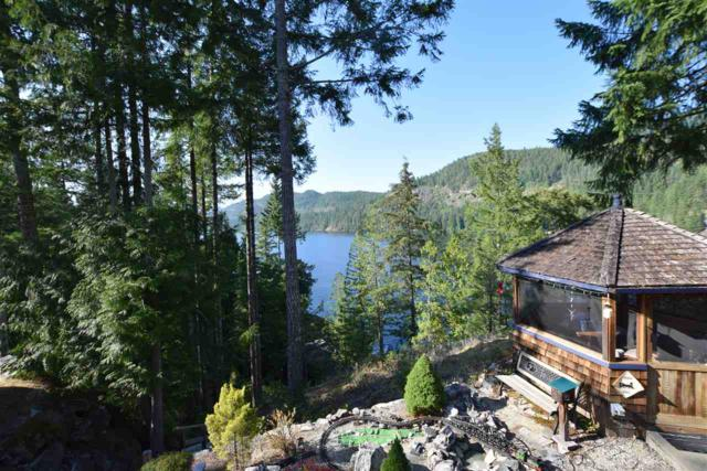 5997 Bluff Place, Madeira Park, BC V0N 2H1 (#R2395459) :: RE/MAX City Realty