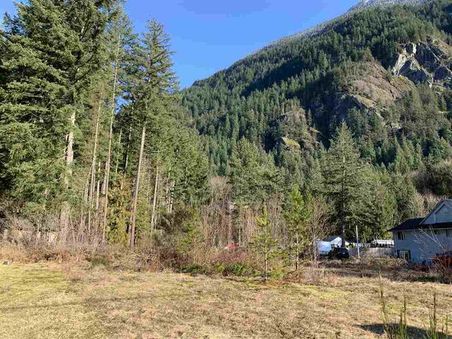 20028 Beacon Road, Hope, BC V0X 1L2 (#R2442560) :: Initia Real Estate