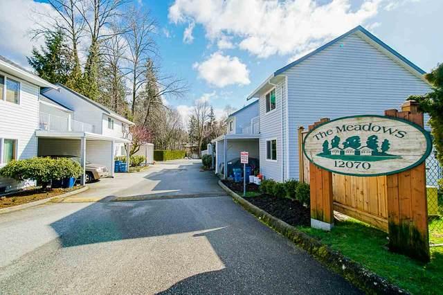 12070 207A Street #12, Maple Ridge, BC V2X 9Y1 (#R2442929) :: 604 Realty Group