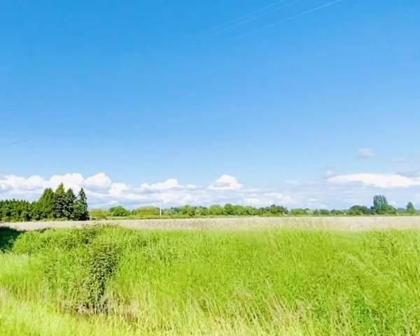 13091 No. 3 Road, Richmond, BC V7A 1X7 (#R2467607) :: 604 Home Group