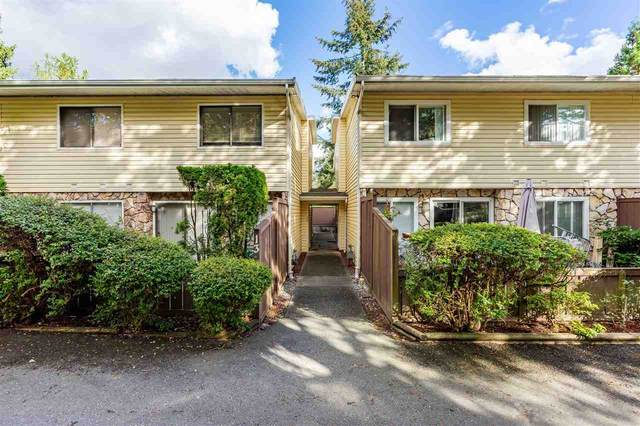9402 122 Street #14, Surrey, BC V3V 4L6 (#R2502086) :: 604 Realty Group