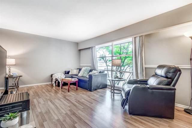 20171 Ospring Street, Maple Ridge, BC V2X 9C2 (#R2506823) :: 604 Home Group
