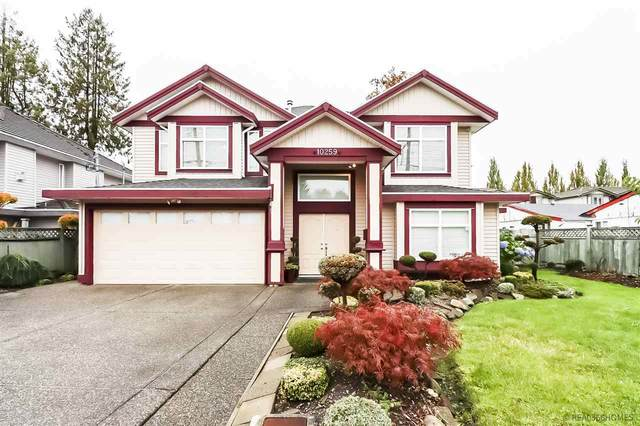 10259 139A Street, Surrey, BC V3T 4M1 (#R2509662) :: Homes Fraser Valley