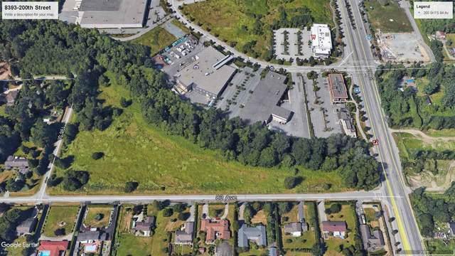 8393 200 Street, Langley, BC V2Y 1Z8 (#R2513389) :: 604 Home Group