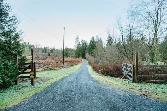 26421 Cunningham Avenue, Maple Ridge, BC V2W 1M8 (#R2529155) :: Macdonald Realty