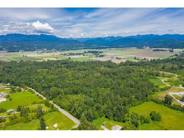 7306 264 Street, Langley, BC V4W 1M6 (#R2554045) :: 604 Realty Group