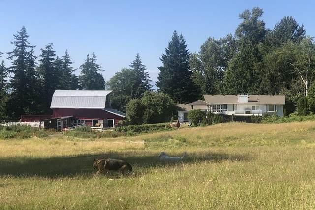 21068 16 Avenue, Langley, BC V2Z 1K3 (#R2600342) :: Initia Real Estate